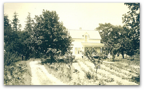 Tom's farmhouse in 1900