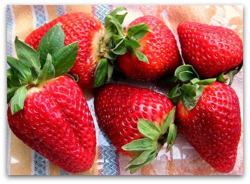 Tasty Odd Couple: Strawberries & Balsamic Vinegar
