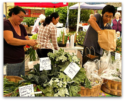 kale at the farmers market