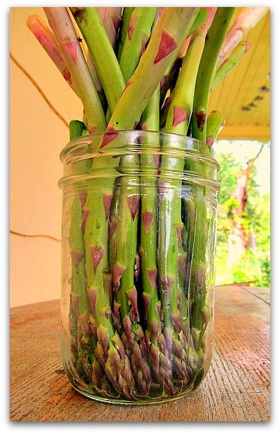asparagus pickle recipe
