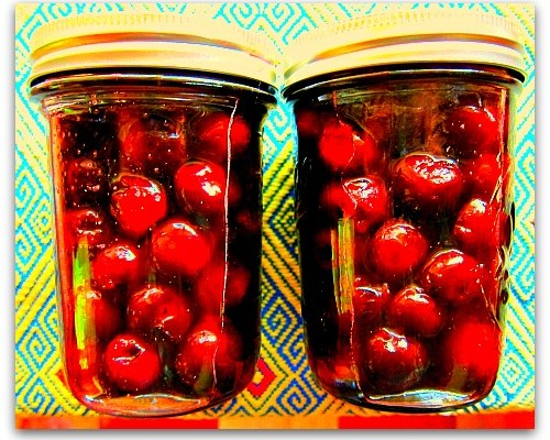 Pickled Sweet Cherries…Who Would Have Thunk?
