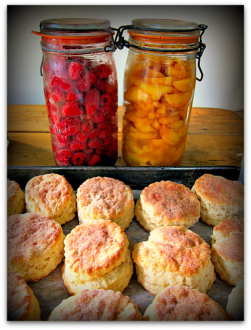 shortcakes raspberry peach