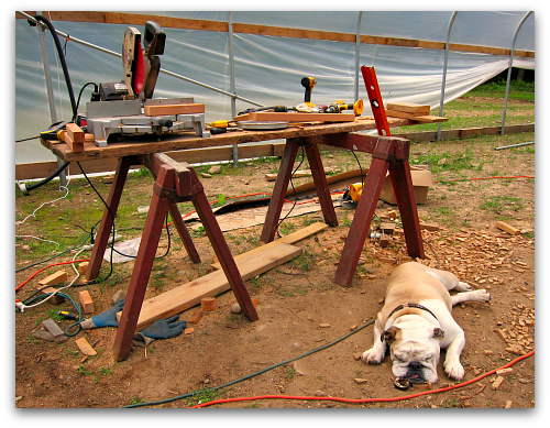 Greenhouse Construction Update: Supervisors Found Sleeping on the Job