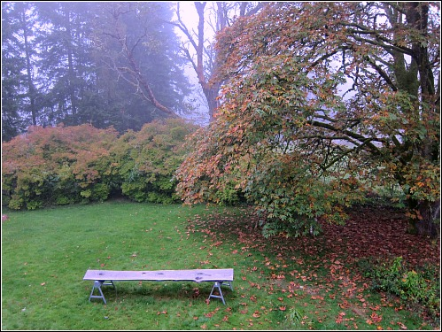A Foggy Day in Vashon Town