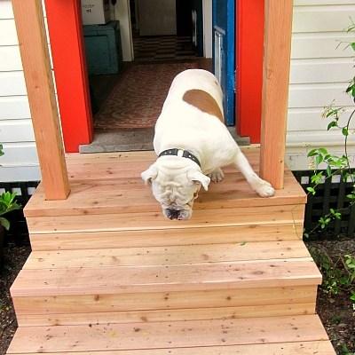 Rebuilding My Porch and DIY Credibility