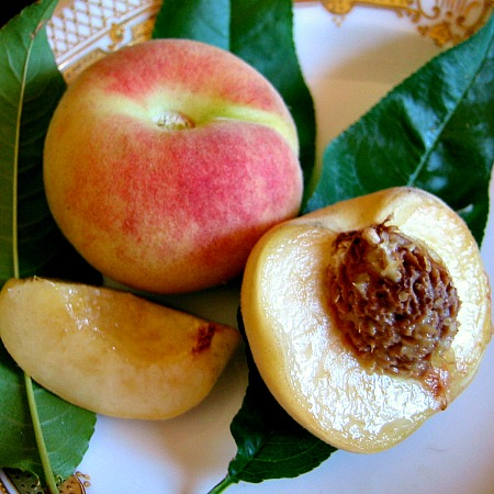 Growing Peach Trees in the Pacific Northwest: It's the Pits