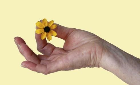 mudra with flower