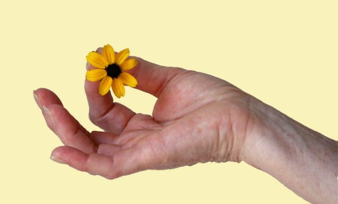 mudra with flower