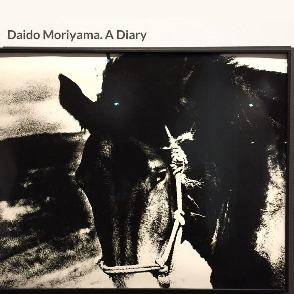 Daido Moriyama. A Diary