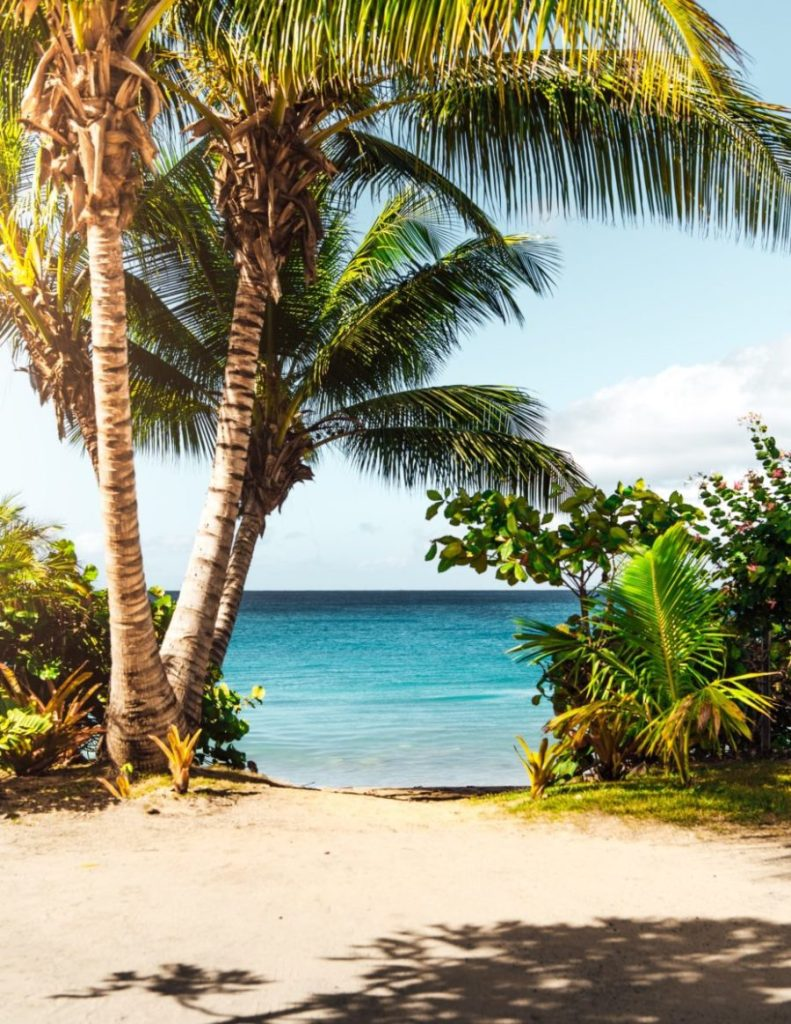 Flight deal! From San Francisco to Puerto Rico for $205 return! [Jan – Jul]