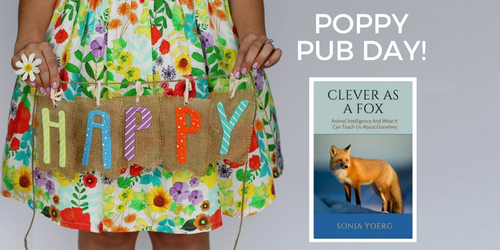 Happy Publication Day: CLEVER AS A FOX by Sonja Yoerg