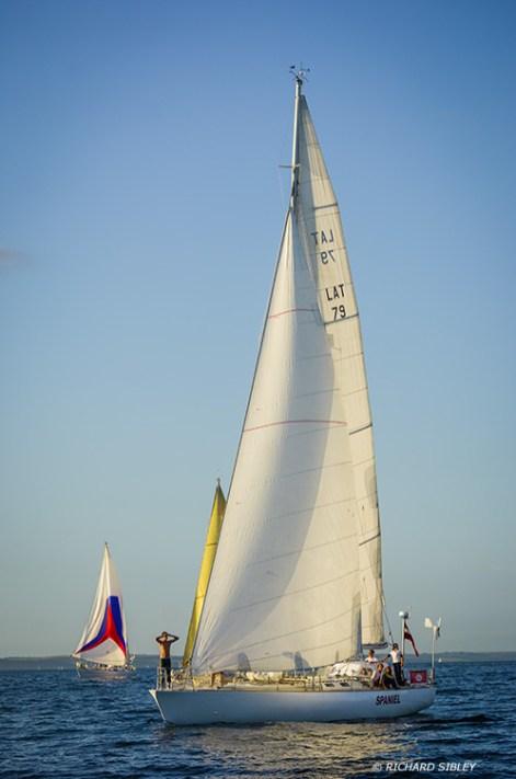Spaniel,Tall Ships,Funchal 500, Falmouth,
