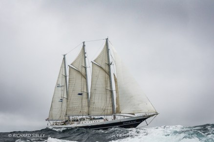 Eendracht,Tall Ships Race,Lerwick,