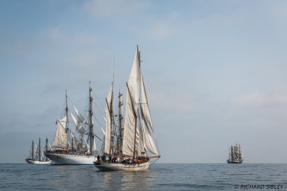 Norwegian ships Christian Radich and Barque Statsraad Lehmkuhl and Danish Ketch Jens Krogh. Alex II and Tenacious are on the horizon
