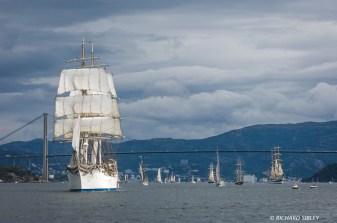 Norwegian Barque, Statsraad Lehmkuhl leads the parade of sail