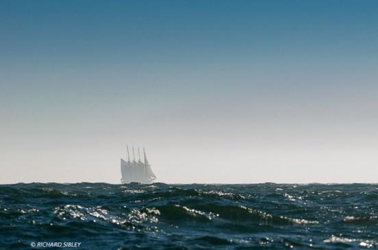 Creoula, 4 Masted schooner, Portugal
