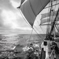 Norwegian barque Statsraad Lehmkuhl on route to Aalborg