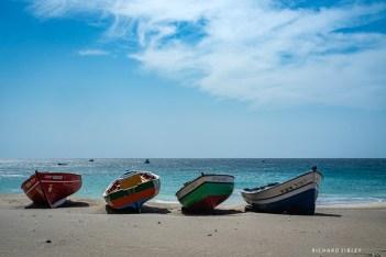 The Tuna boats of Sao Pedro