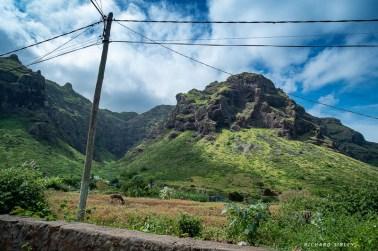A green and pleasant landscape, Sao Nicolau
