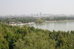 Another view from Longevity Hill