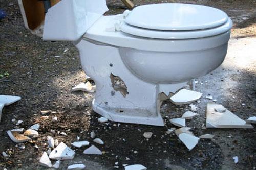 Toiletbashing007