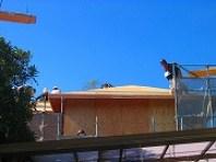 上棟、屋根