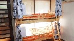 タマゴハウスのドミトリーベッド。毎日清掃が入るので清潔キレイ
