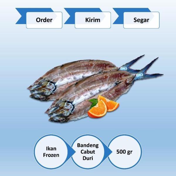 Ikan Beku Bandeng Cabut Duri 500 gr Surabaya