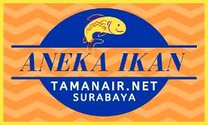 Logo Aneka Ikan Taman Air Surabaya