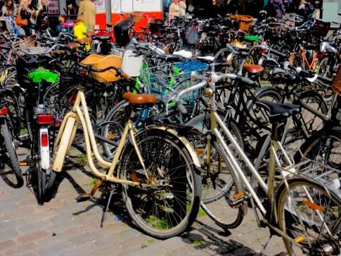 Bike were again a popular feature
