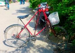 Alternative bike design
