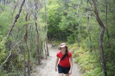 The Abel Tasman track