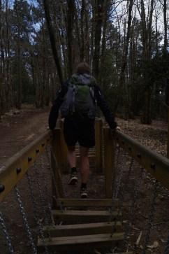 Activities on the path to Portovenere