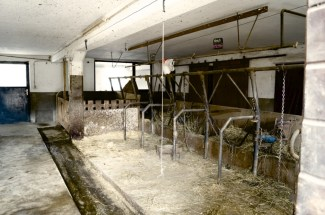 They house the cows downstairs for warmth