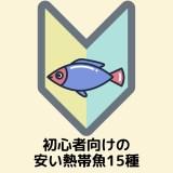 飼いやすい&安い熱帯魚15種