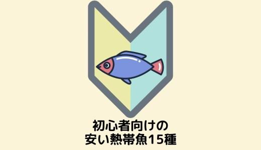【初心者におすすめ!】500円以下の丈夫&飼いやすい熱帯魚15種【小型&中型種】