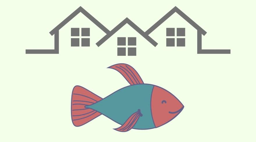 家と熱帯魚