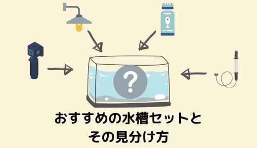 【水槽セットはどれがいいの?】初心者はフィルターとヒーターを要チェック!