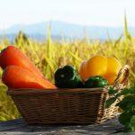 農薬を最小限にすることが健康維持にとっても大切だということを再認識する必要性