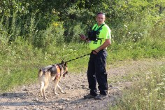 Day 3 of Search for Jesse Rex Farber, Sharp Mountain, Tamaqua, 8-15-2015 (87)