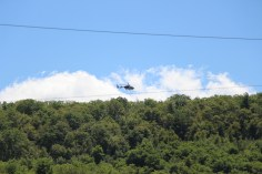 Search for Missing Man, South Ward Mountain, Tamaqua, 8-13-2015 (155)