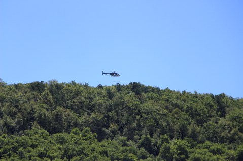 Search for Missing Man, South Ward Mountain, Tamaqua, 8-13-2015 (23)