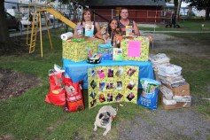 SPCA Donation Drive, Tamaqua Girl Scouts, North and Middle Ward Playground, Tamaqua, 8-13-2015 (39)
