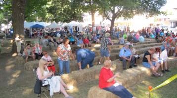 Redneck Festival 2015, Weissport, 9-6-2015 (95)