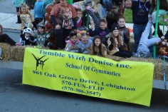 45th Annual Halloween Parade, Lehighton, 10-17-2015 (352)