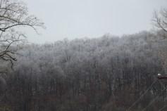 winter-wonderland-ice-on-trees-along-sr54-and-interstate-81-barnesville-1-24-2017-13