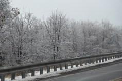 winter-wonderland-ice-on-trees-along-sr54-and-interstate-81-barnesville-1-24-2017-16