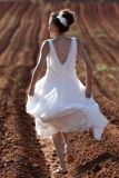 שמלת כלה שיפון עם גב חשוף