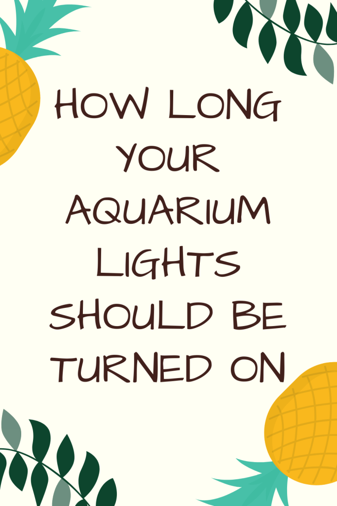 How Long Your Aquarium Lights Should Be Turned On: Aquarium lighting systems of different variants are applied to most aquariums.
