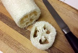Loofa Slices -- The Tamara Blog